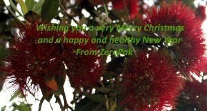 ZeroPak Christmas Message 2017