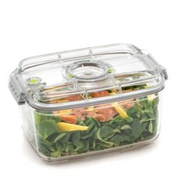 ZeroPak 2 Litre Vacuum Container - Salmon and Salad