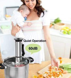 biolomix ipx7 sous vide cooker quiet operation